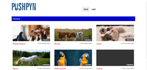website design company in dhanbad